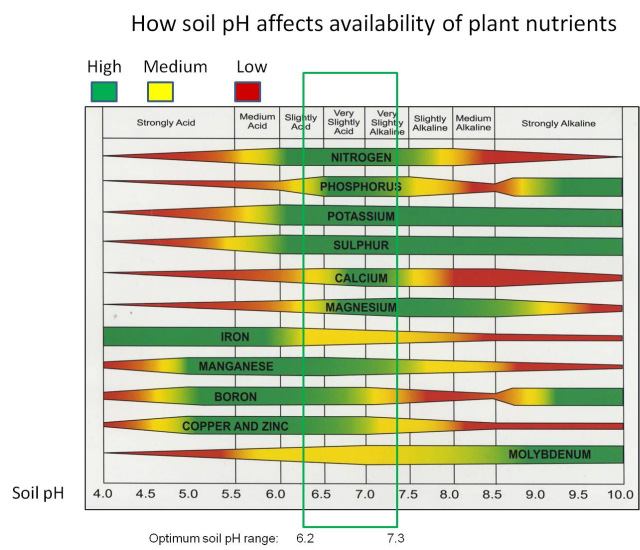 Soil pH Nutrient Availability